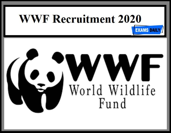 WWF Recruitment 2020