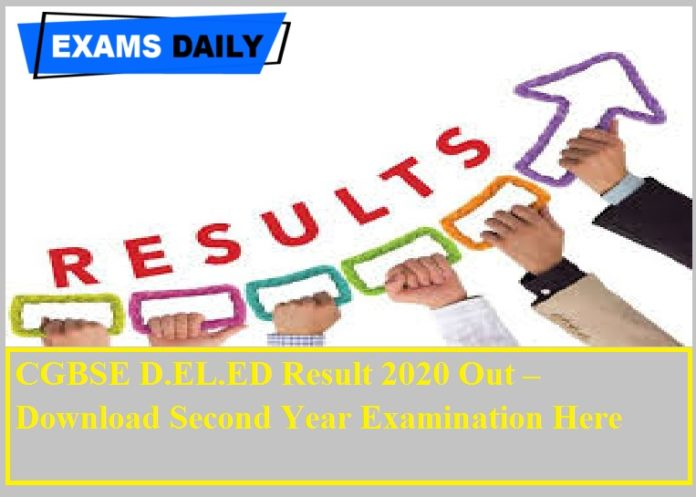 CGBSE D.EL.ED Result 2020 Out – Download Second Year Examination Here