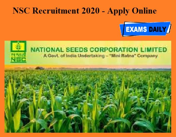 NSC Recruitment 2020 OUT - Apply Online