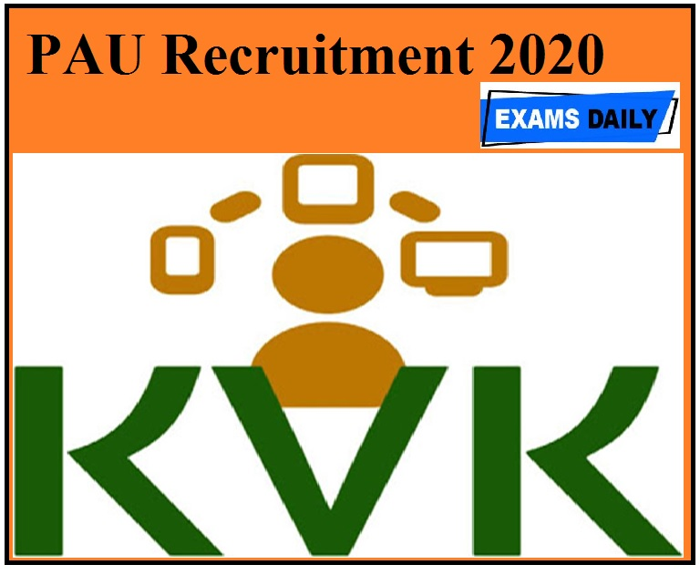 PAU Recruitment 2020 Out – Apply For Pulse Technology Agent Vacancies!!!