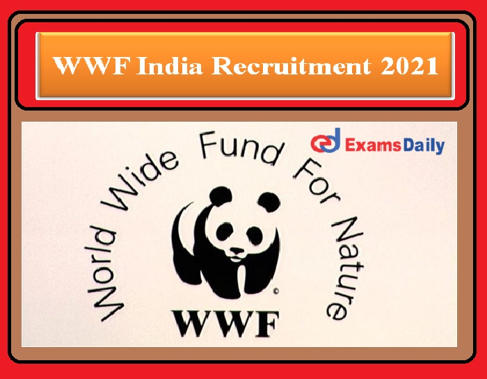 WWF India Recruitment 2021 OUT – Graduates Can Apply Here
